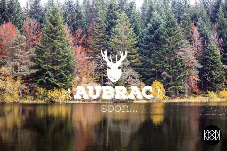AUBRAC-copie.jpg