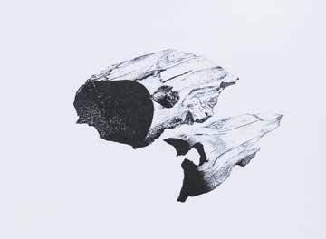 charbon-1-issu-de-la-sc3a9rie-les-reliefs.jpg